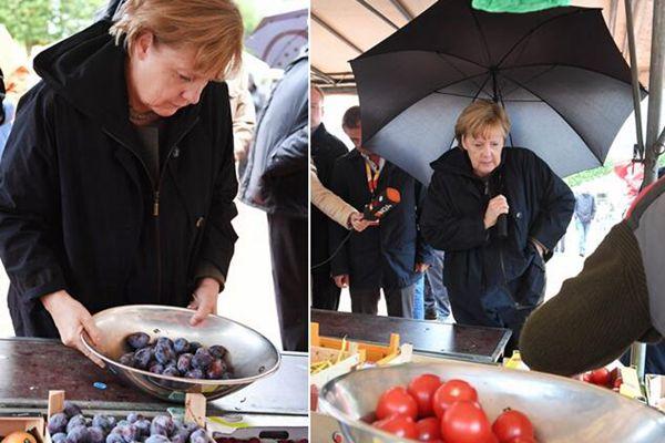 德国总理默克尔集市发表演讲 结束顺道买水果