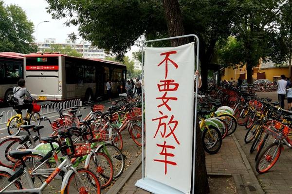 """公交站被共享单车包围 商家打牌""""不要放车"""""""