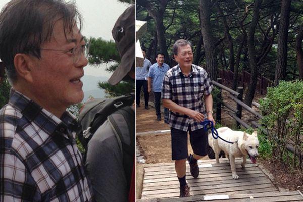 韩国总统文在寅带爱犬爬山 心情愉悦