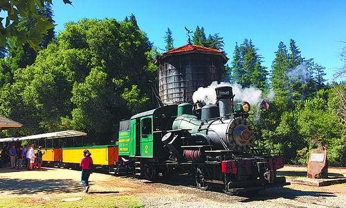 乘蒸汽火车探幽美国千年红杉