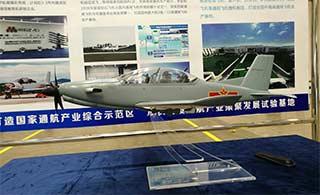 奥地利飞机模型涂装中国空军军徽