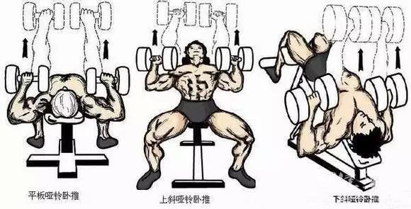 史上最全33个健美健身最佳方法,男神是这样练成的