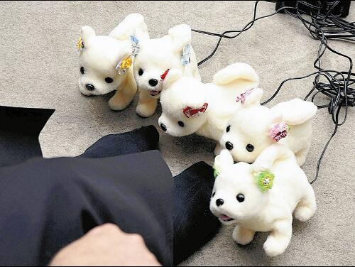 日本开发脚臭鉴定机器狗 预计2018年春季起售