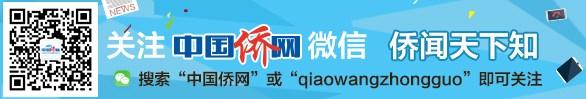 中国侨网微信公众号入口