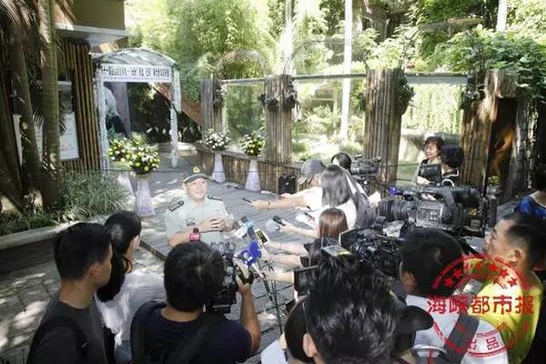 揭秘熊猫明星巴斯的最后100天,饲养员回忆录催人泪下