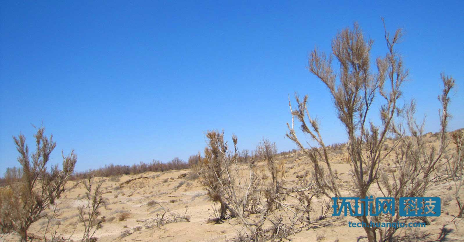 最新研究:中国内陆沙尘污染的真正根源是戈壁荒漠