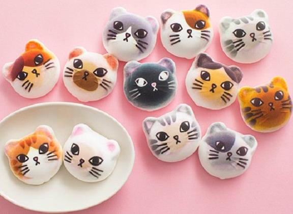 你说什么!这些萌化了的猫猫居然可以吃?