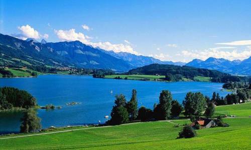 瑞士4大企业成中资目标