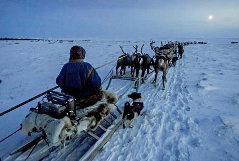 图记世界边缘的西伯利亚牧民生活
