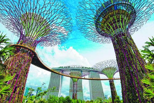 新加坡超级树智慧心绿倾城
