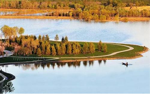 东珠景观:湿地生态修复推动公司持续发展