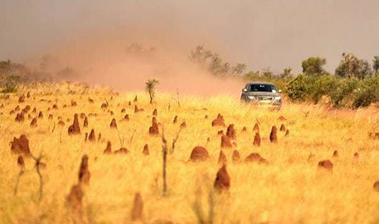 最暖冬季!澳大利亚今冬澳大利亚比往年平均高2℃