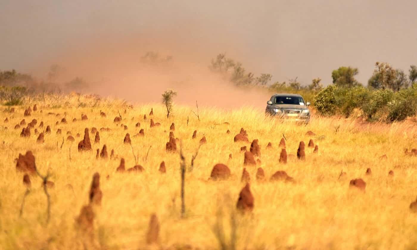 """澳大利亚""""暖冬""""温度再创纪录:最高时超35度"""