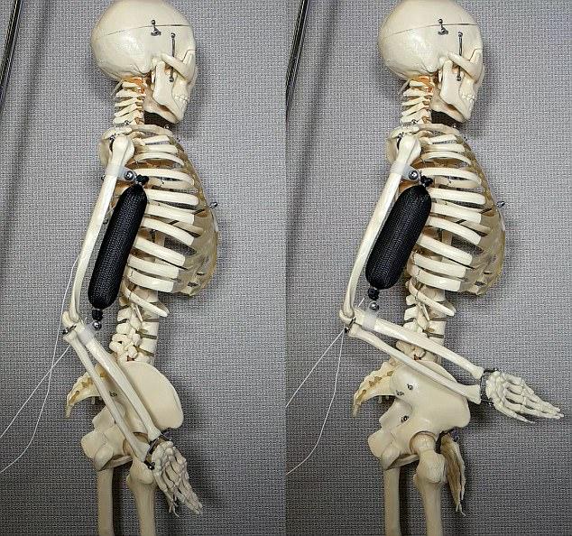 史上最逼真人造肌肉问世 会让未来机器人更强大