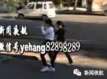 密恐慎入!哈尔滨街头漫天小飞虫 专家:别穿黄衣服
