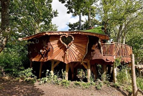英夫妇露营地打造豪华树屋 装饰精美