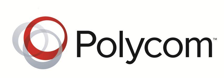 专访Polycom Gabrielle Cichero:科技改变生活
