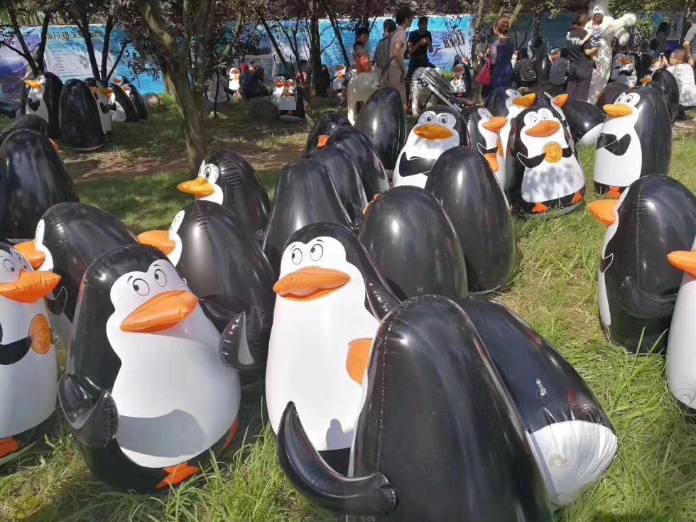 万只企鹅来南通?游客带羽绒服去围观,傻眼了……