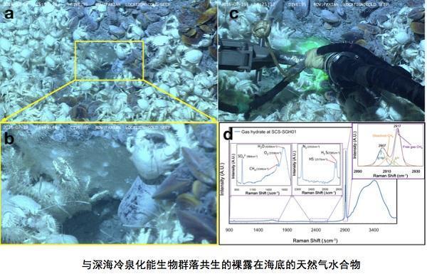 """中国科学家首次在南海发现裸露""""可燃冰"""""""