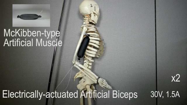 新型软性人造外骨骼可让我们举起1000倍的重量