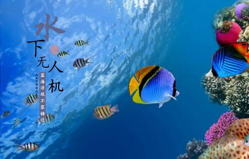 """水下无人机蓝海浮现 """"起跑线竞争""""下个大疆是谁"""