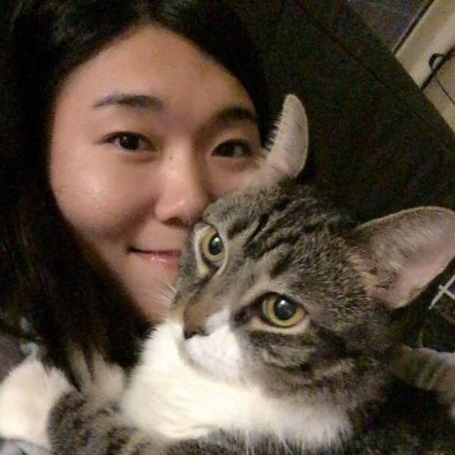 中国女生在美遇害案被定为家暴 中领馆吁尽快缉凶