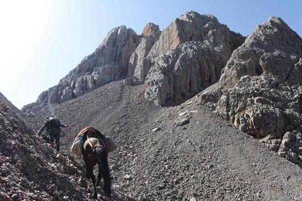 最后的放牧人:4000多米高山上飞檐走壁