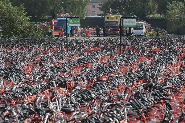 """上海又现共享单车""""坟场"""" 均为违停暂扣"""