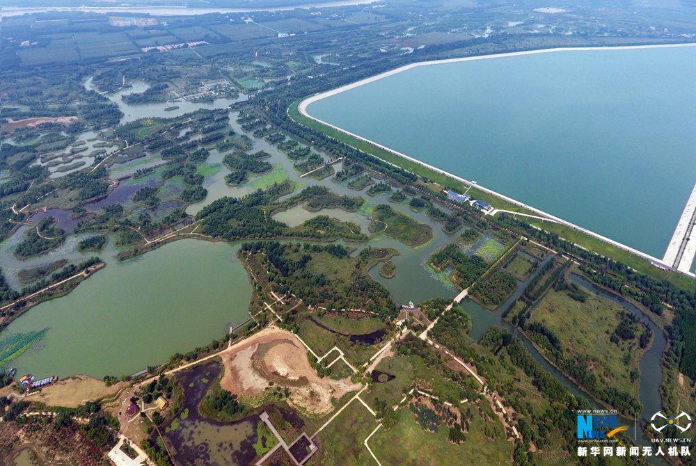 """航拍济西湿地:泉城济南生态完整的""""城市之肾"""""""