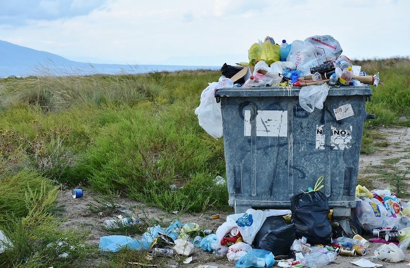 中巴两国科学家发现食塑真菌 或解决垃圾处理难题