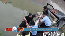 重庆发现重达100多斤野生中华鲟成鱼