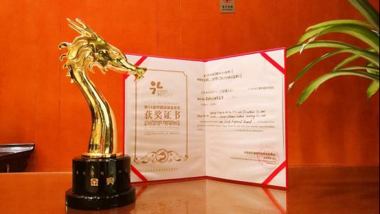 柏言映画《少年锦衣卫》获2017金龙奖最佳系列动画金奖图片