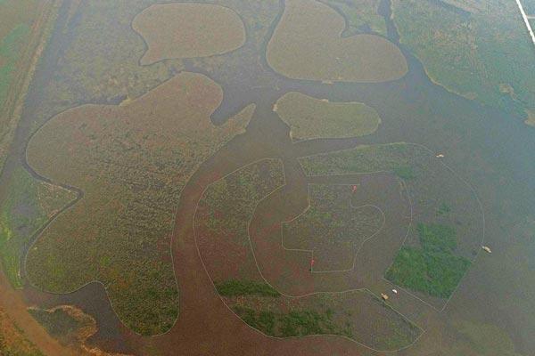 黄河岸边现最大水中福字 国庆节民众福中游感受美丽乡