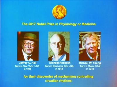 三名美国科学家分享诺贝尔生理学或医学奖