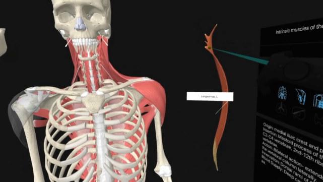 医学院学生可以用VR技术来模拟人体解剖试验了