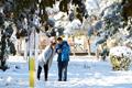 新疆多地迎来降雪 雪后美景如画