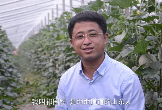 山东80后小伙种出媲美日本的网纹瓜,年销2000万!