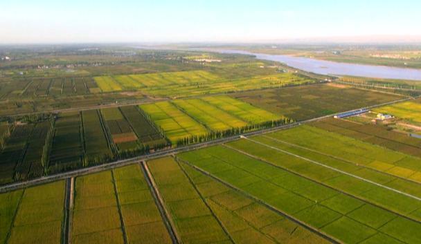 中国三处古代水利工程申报世界灌溉工程遗产成功 - 张庆瑞65 - 百纳袈裟