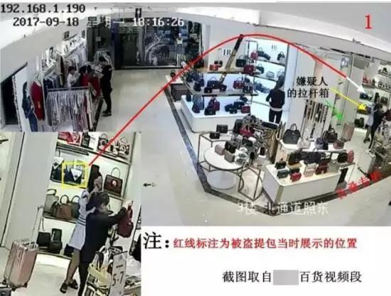 女子连偷9个包包被抓:看到这个牌子实在忍不住