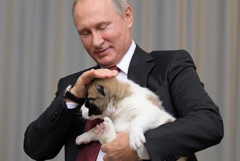 硬汉总统普京的狗狗情缘 尽显柔情