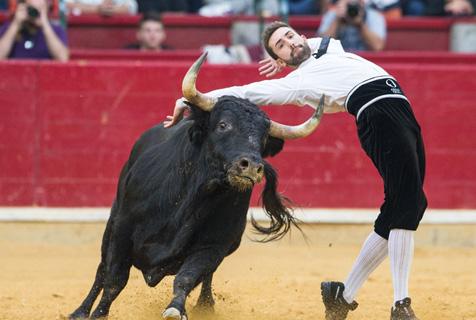 西班牙上演惊险斗牛赛 斗牛士各显神通