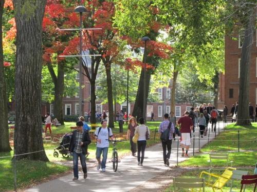 美国哈佛大学招生被控种族歧视 司法部仍在调查