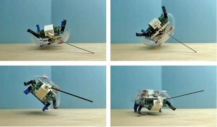 Roachbot - 一款能轻松翻转的带尾巴蟑螂机器人