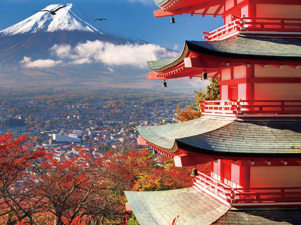 在日外国人数量再创新高 华人占总数近三分之一