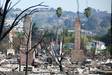 美国山火肆虐后景象:树林焦黑一片
