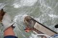 """台风""""卡努""""来袭 15船员获救过百渔民上岸"""
