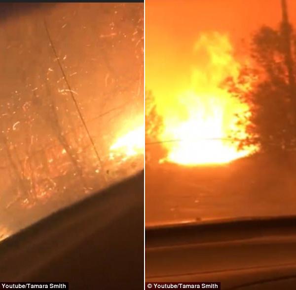 实拍加州两男子野火中惊险逃生全过程 惊险至极