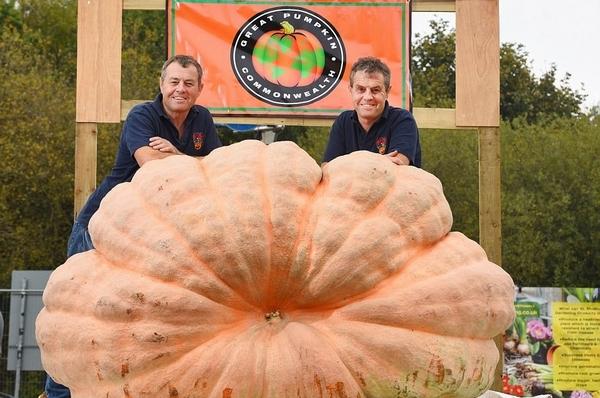 英孪生兄弟种出巨型南瓜再破纪录 重达1029千克