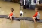 越3岁男童骑蟒蛇玩耍