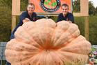 英孪生兄弟种出巨型南瓜
